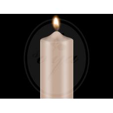 """Dažai žvakėms """"BEKRO"""", 10 g, rusva"""