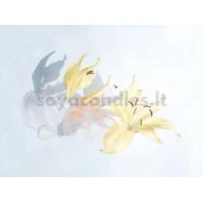 """Eterinis aliejus """"Imbierinė lelija ir kvapioji kananga"""", 30 g"""