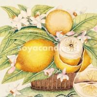 """Aromatinis aliejus """"Apelsinas su prieskoniais"""", 30 g"""