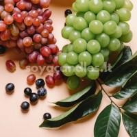 """Aromatinis aliejus """"Desertinės vynuogės"""", 30 g"""