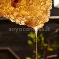 """Aromatinis aliejus """"Medus ir kreminis santalas"""", 30 g"""