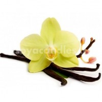 """Aromatinis aliejus """"Tikroji vanilė"""", 30 g"""