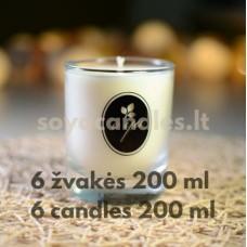 Žvakių gamybos rinkinys pradedančiam (6 žvakės, bekvapės)
